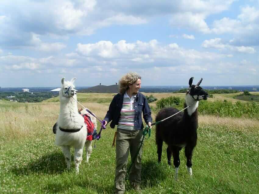 TALK | Beate Pracht und Andrea Eikelmann: Personalentwicklung und Coaching mit Tieren