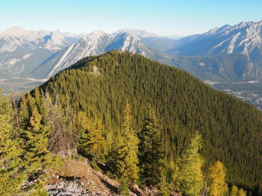 Meeting-Location in den kanadischen Rocky-Mountains: 5 mal MICE im Banff Nationalpark {Review} Banff010