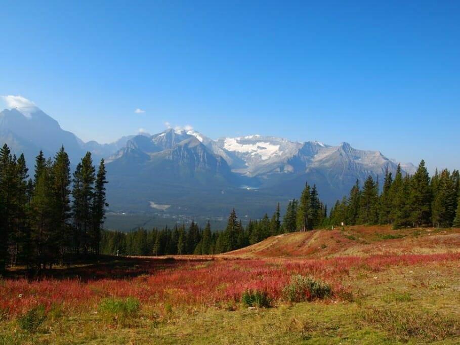 MICE-Location im kanadischen Lake Louise: Meeting am grünen Spiegel-See {Review} Canada