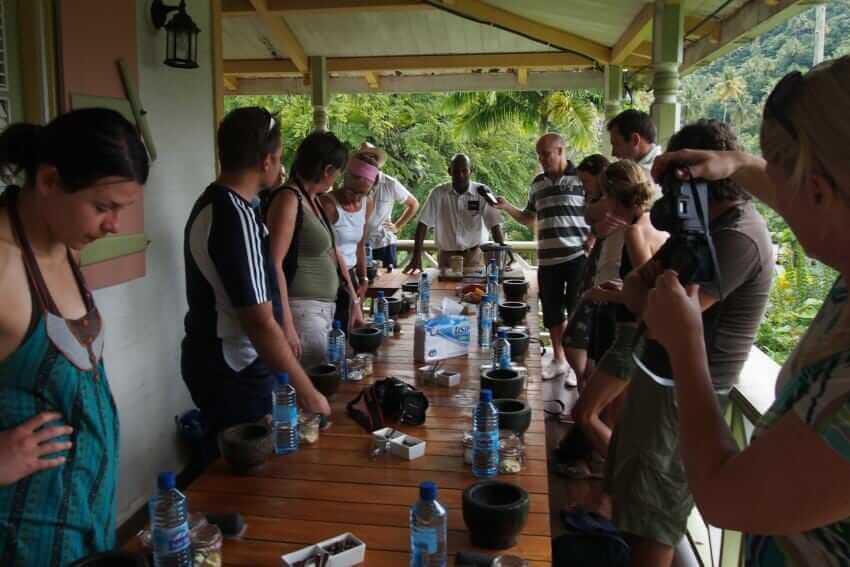 Meetings und Incentives im Schokoladen-Hotel: Design im Dschungel {Review} chocolat05