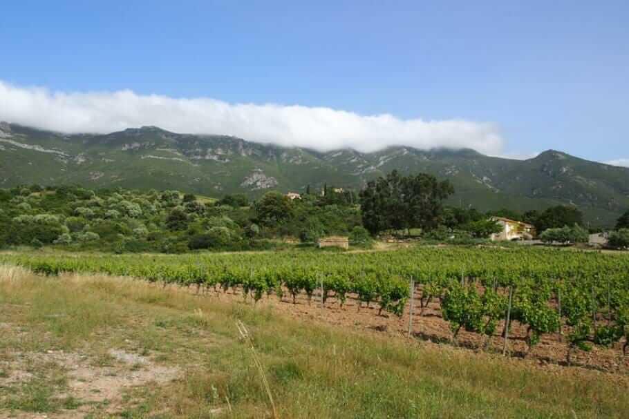 Meetings auf Korsika: Abenteuer und Teambuilding {Review} Korsika008