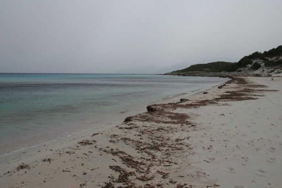 Meetings auf Korsika: Abenteuer und Teambuilding {Review} Korsika024