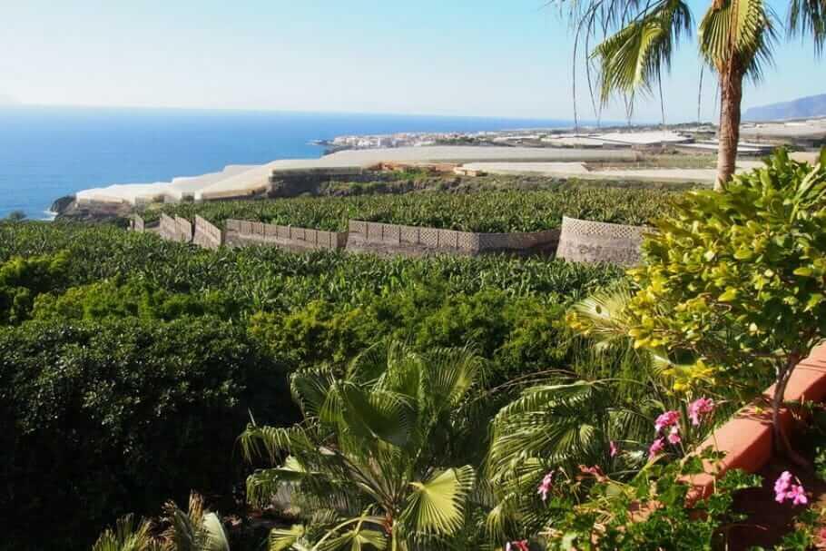 Luxus-Resort im Süden Teneriffas: Das Abama {Review} teneriffa-abama004