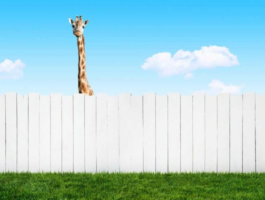 Nachbar