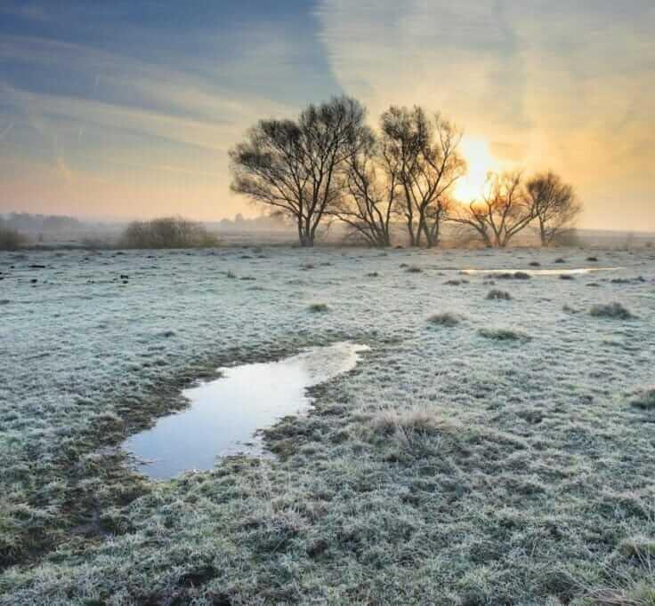 nature_winter