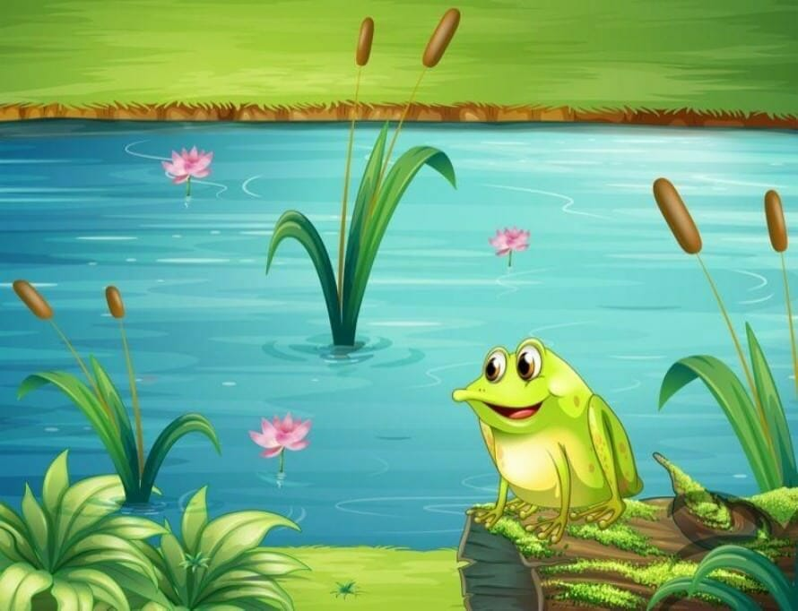The human in the business: In the end it's the frogs In the end it's the frogs