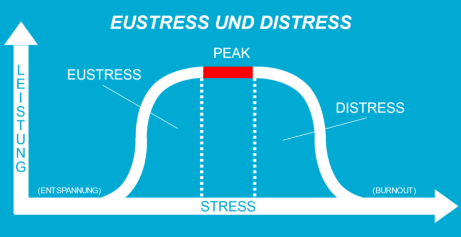 Eustress-Distress