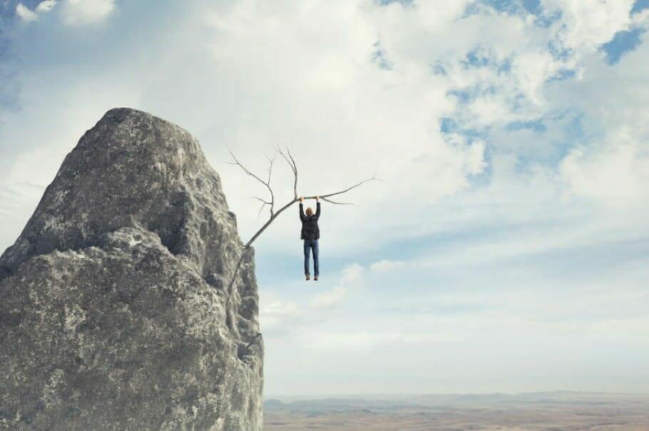 job security-hedge-professional beginner