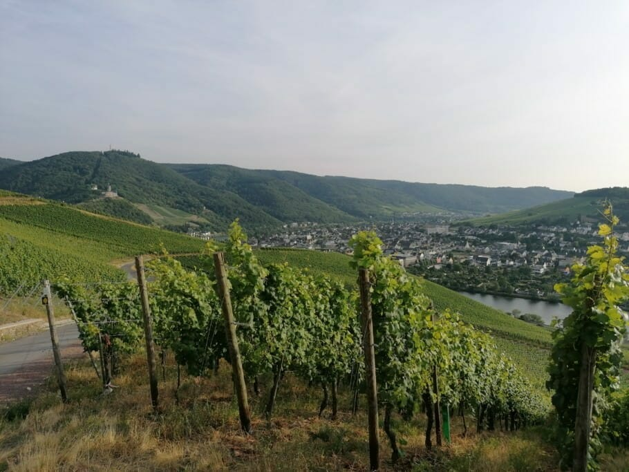 Relaxed hiking on the Moselle: deceleration on a short trip {Review} Relaxed hiking on the Moselle: deceleration on a short trip {Review}