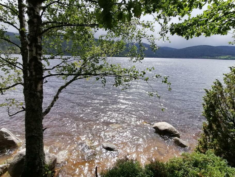 Die 5 Besten Wanderwege für Kurz-Auszeit und Entspannen ohne Stress {Review}