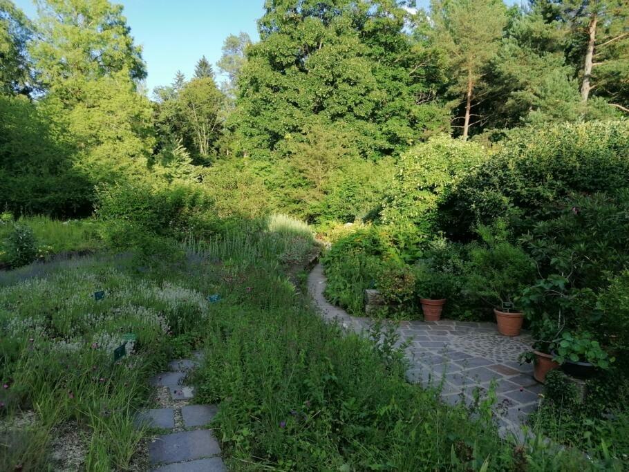 Entspannt und Gesund per Kneipp-Kur: Ein Selbsterfahrungs-Bericht